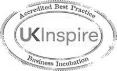 UK Inspire logo grey scale