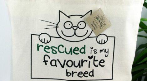 EcoKitty rescue kitty pillow